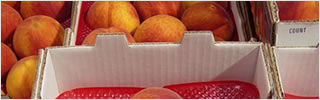 Packaging Uses & Applications